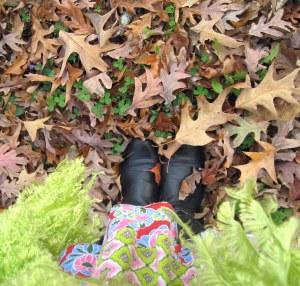 fall_leaves_walk