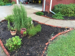 My lovely landscaping. (Please ignore the messy garage.)