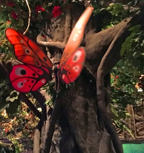 rainforest_butterfly
