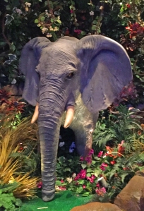 rainforest_elephant