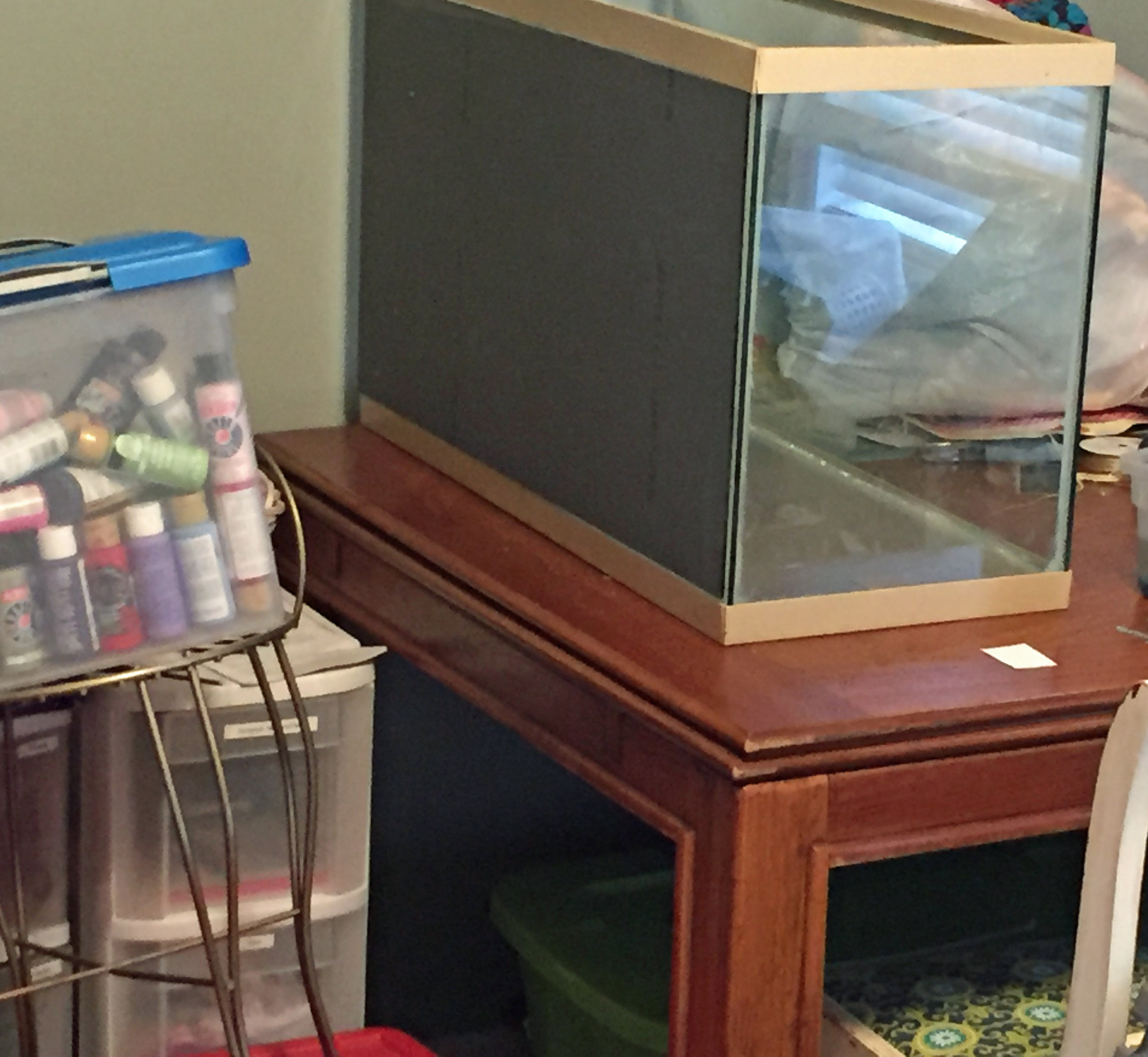 aquarium_craft_room